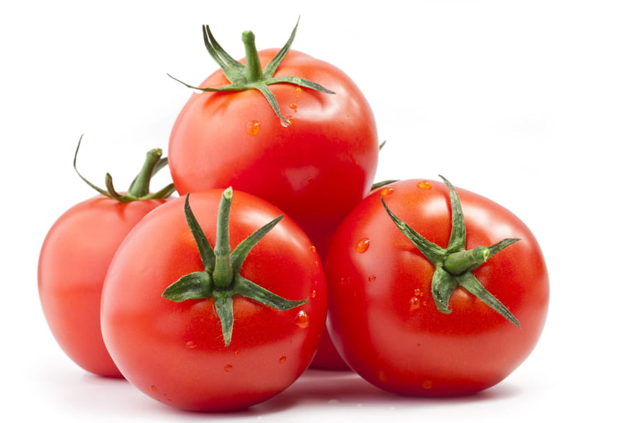Les tomates rondes de table